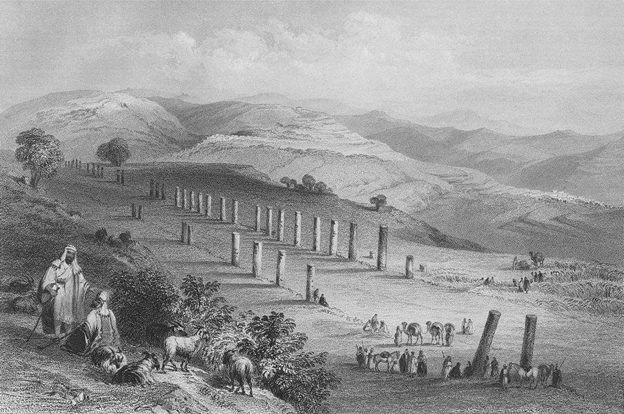 Associate Product ISRAEL. Colonnade, Sebaste, Samaria-Bartlett 1847 old antique print picture