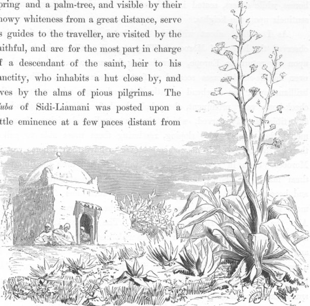 Associate Product MOROCCO. The Cuba of Sidi-Liamani 1882 old antique vintage print picture