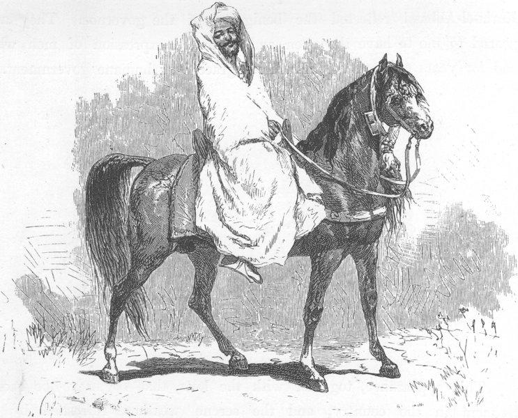 Associate Product MOROCCO. Bu-Bekr-Ben-El-Abbassi 1882 old antique vintage print picture