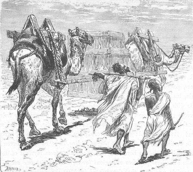 MOROCCO. The camel conveyance 1882 old antique vintage print picture