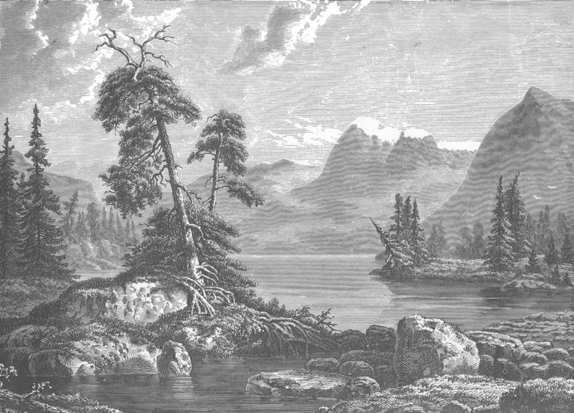 Associate Product NORWAY. A view on the Hardangerfjord 1890 old antique vintage print picture