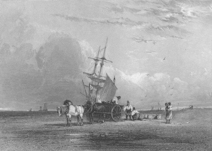 HORSES. Sea coast 1836 old antique vintage print picture