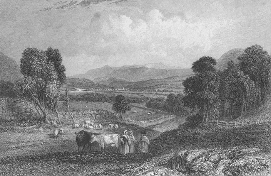 Associate Product SCOTLAND. Lachin-Y-Gair, cows ; Finden 1833 old antique vintage print picture