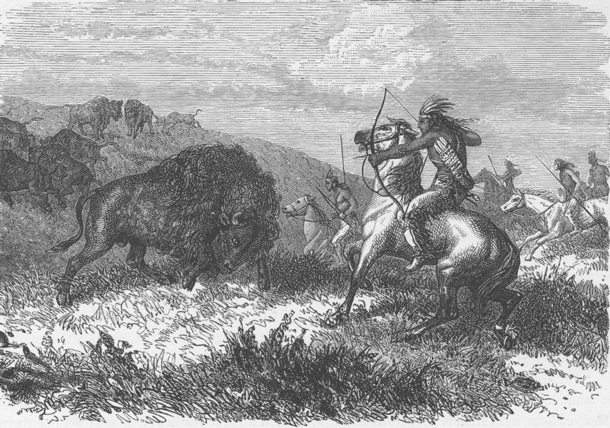 Associate Product USA. Buffalo hunting 1890 old antique vintage print picture
