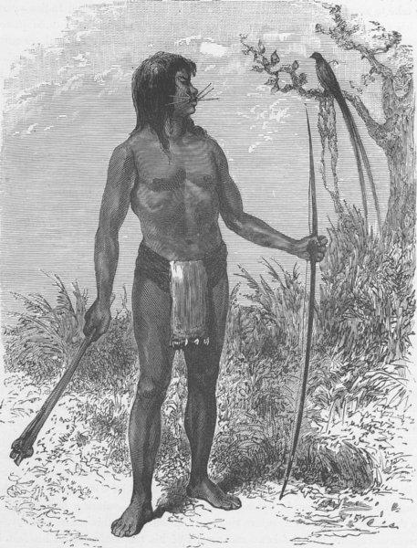 Associate Product BRAZIL. Mesaya Indian of the River Japura, Amazon tributary 1890 old print