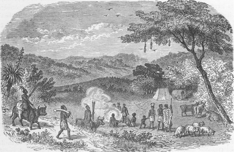 Associate Product SOUTH AFRICA. Camp of Negroes 1890 old antique vintage print picture