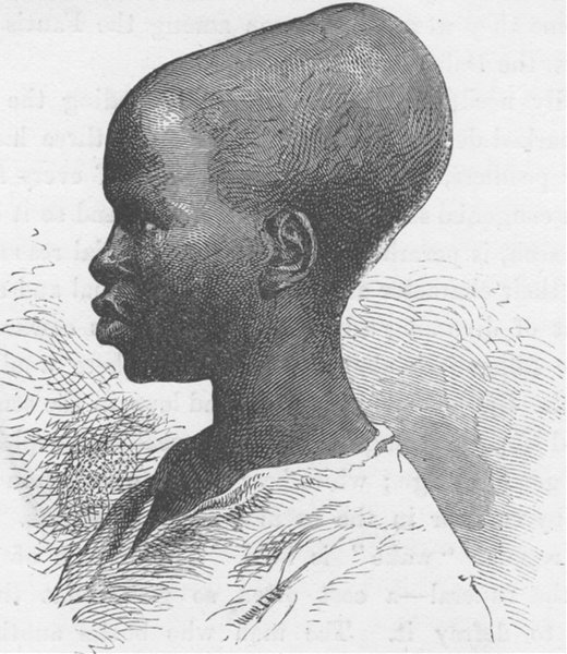 Associate Product SENEGAL. Youth of Senegal 1891 old antique vintage print picture