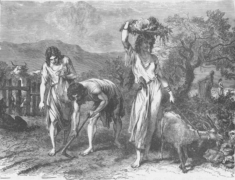 Associate Product BRONZE AGE. Cultivation of gardens during the Bronze Age 1893 old print