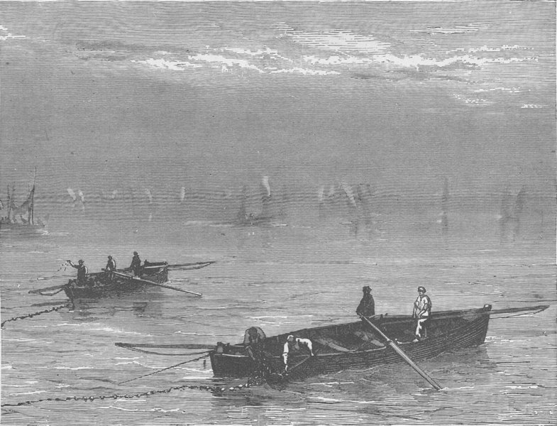 FRANCE. Sardine fishing 1894 old antique vintage print picture