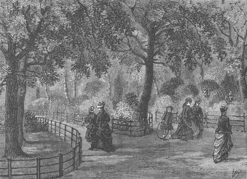 Associate Product KENSINGTON GARDENS. The Flower Walks. London c1880 old antique print picture