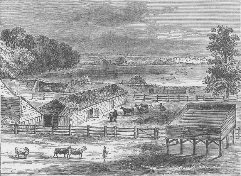 Associate Product TYBURNIA (NOW MARBLE ARCH). The Place of Execution, Tyburn, in 1750 c1880
