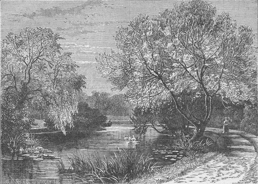 Associate Product THE REGENT'S PARK. The botanical Gardens, Regent's Park. London c1880 print