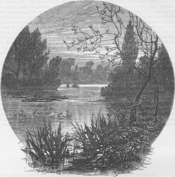 Associate Product WANDSWORTH. The lake, Battersea Park. London c1880 old antique print picture