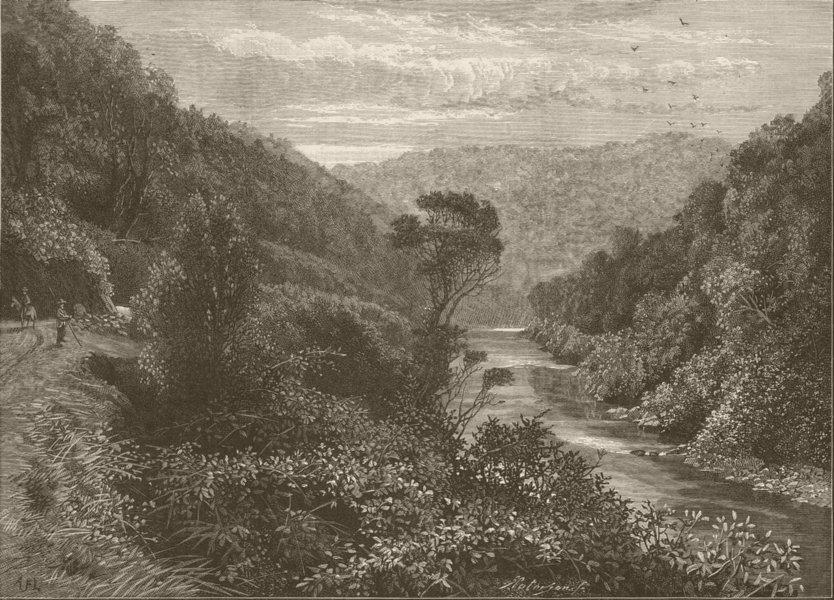 Associate Product NEW ZEALAND. Wellington to Napier. Manawatu Gorge 1890 old antique print