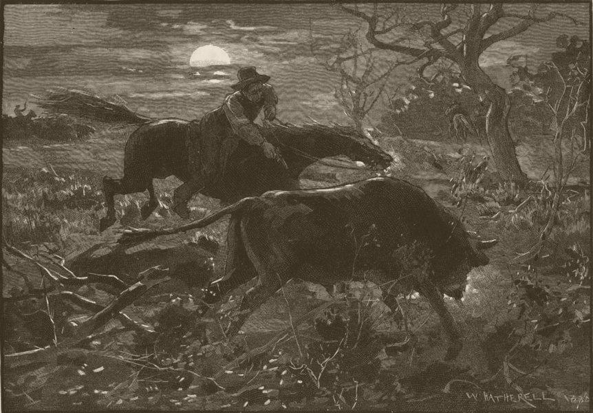 Associate Product AUSTRALIA. Jack Seymour. bulls are off! 1890 old antique vintage print picture