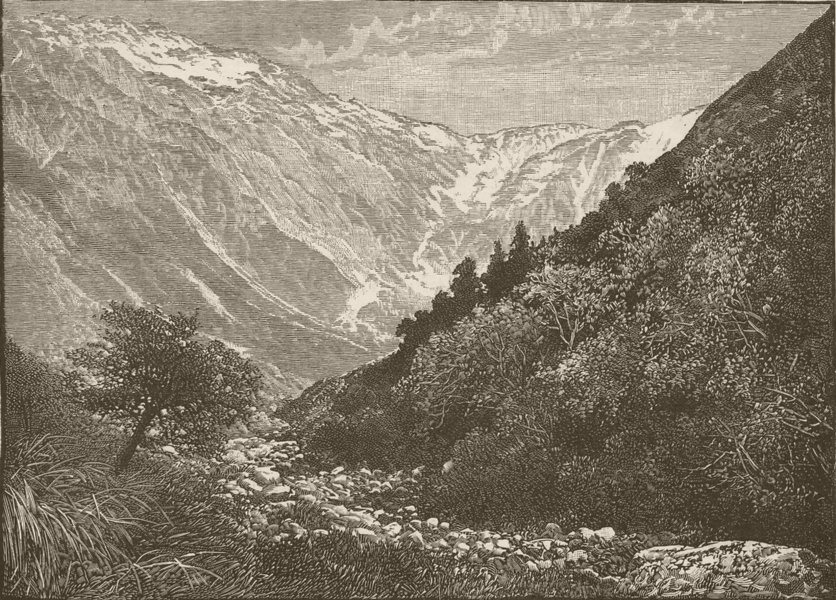 Associate Product MOUNT COOK. . Ben Ohou Range, Mackenzie Country 1890 old antique print picture