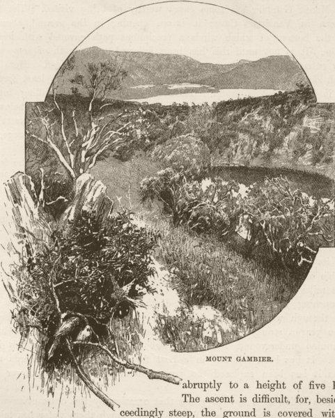 Associate Product AUSTRALIA. Mount Gambier 1890 old antique vintage print picture
