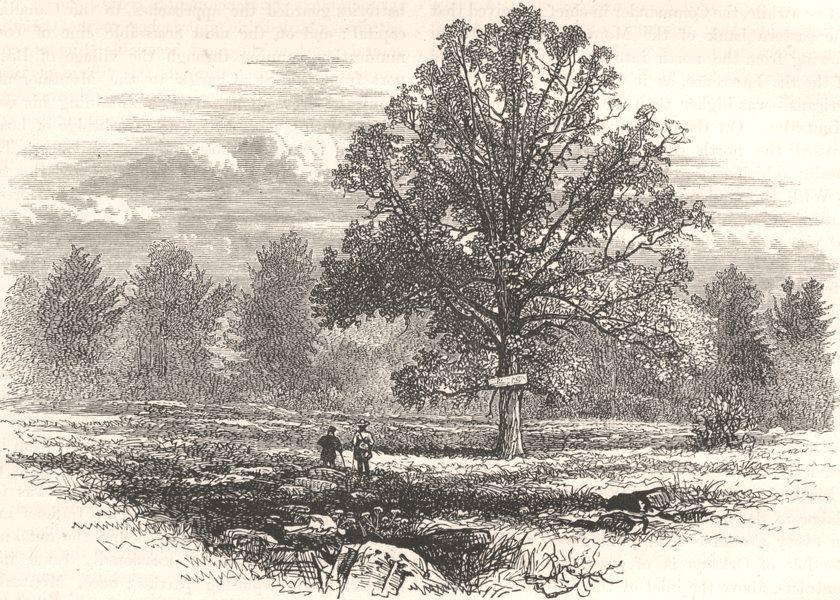 Associate Product MILITARIA. Battlefield of Abercrombie's defeat c1880 old antique print picture