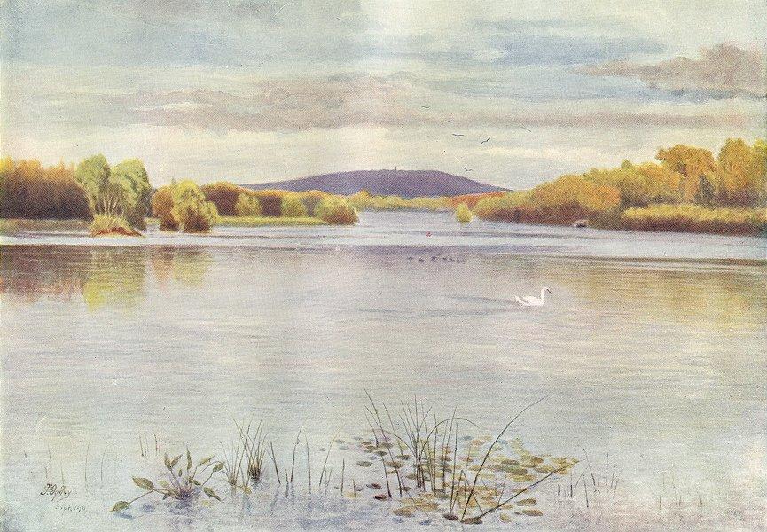 Associate Product EWHURST. Vachery Pond. Surrey 1914 old antique vintage print picture
