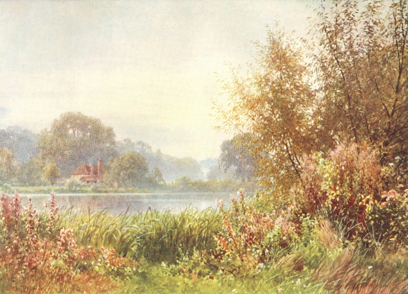 Associate Product SURREY. Pilgrims way. Autumn Weeds, Chilworth 1912 old antique print picture