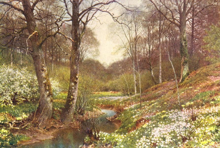 Associate Product SURREY. Spring blossoms, Dorking 1912 old antique vintage print picture