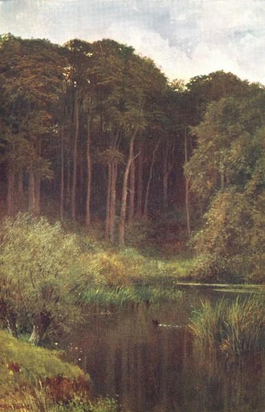Associate Product SURREY. Woodland Depths, Wotton 1912 old antique vintage print picture