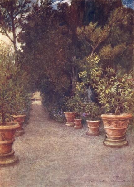 Associate Product TUSCANY. The Ilex walk, Villa Dell' Ombrellino San Domenico, in April 1905