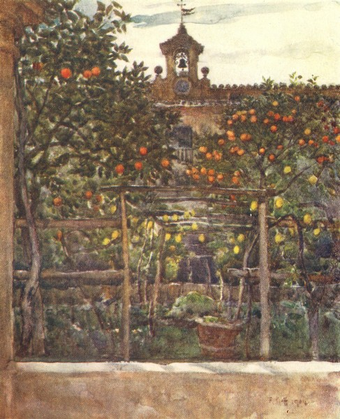 Associate Product TUSCANY TOSCANA. Orange & Lemon treeS in an old Convent garden 1905 print