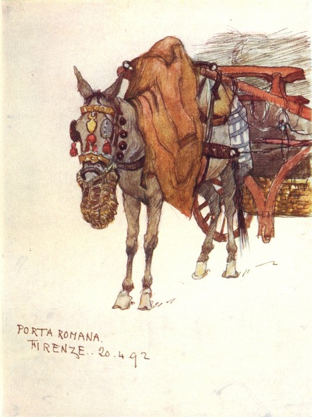 Associate Product TUSCANY TOSCANA. Mule, Decorated Harness & Rope Nose-Bag 1905 old print