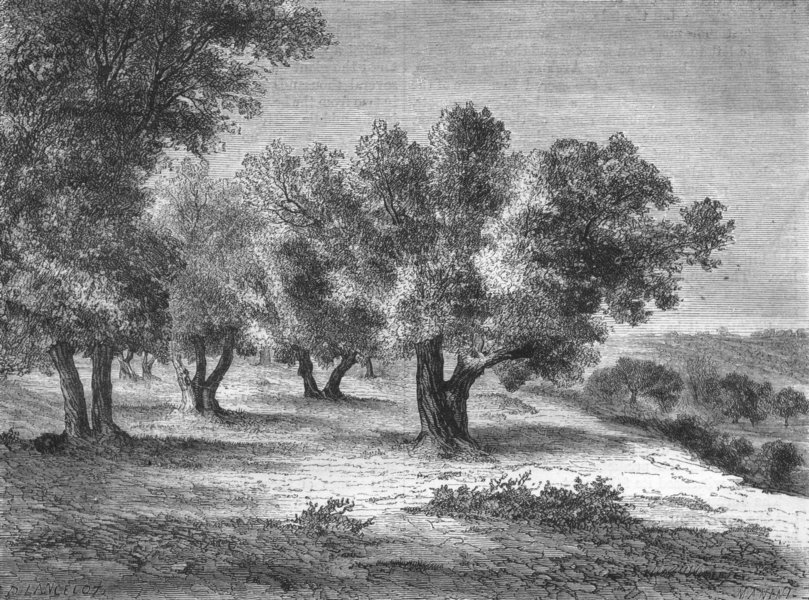 Associate Product ISRAEL. Jerusalem. field of blood, Valley Hinnom 1870 old antique print
