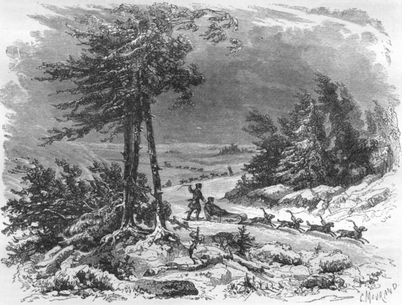 Associate Product WINTER SPORTS. Amoor. Sledge & Dogs 1870 old antique vintage print picture