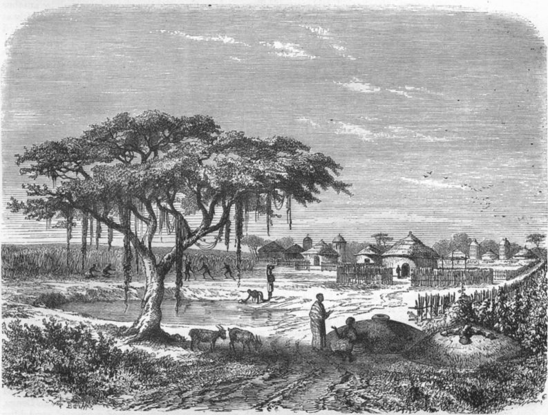 NIGERIA. Mbutudi-Marghi village 1870 old antique vintage print picture