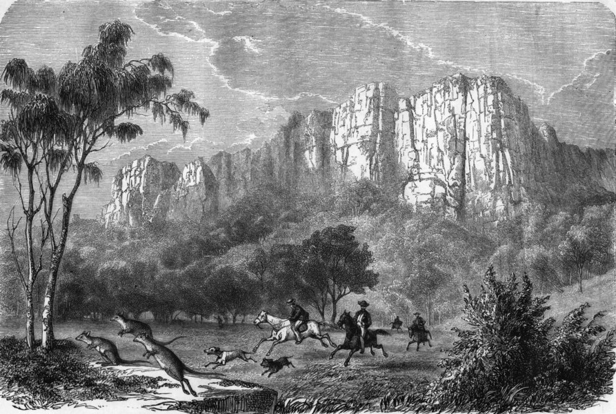 Associate Product AUSTRALIA. Hunting Kangaroos 1870 old antique vintage print picture