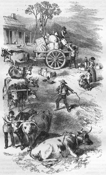 Associate Product AUSTRALIA. Return of Dray 1870 old antique vintage print picture