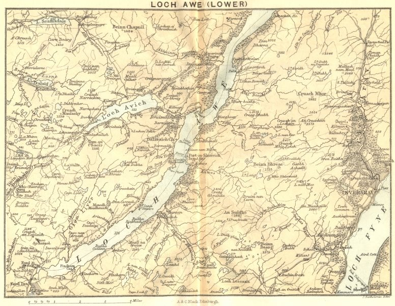 Associate Product SCOTLAND. Loch Awe(Lower). Loch Fyne. Inverary 1887 old antique map plan chart