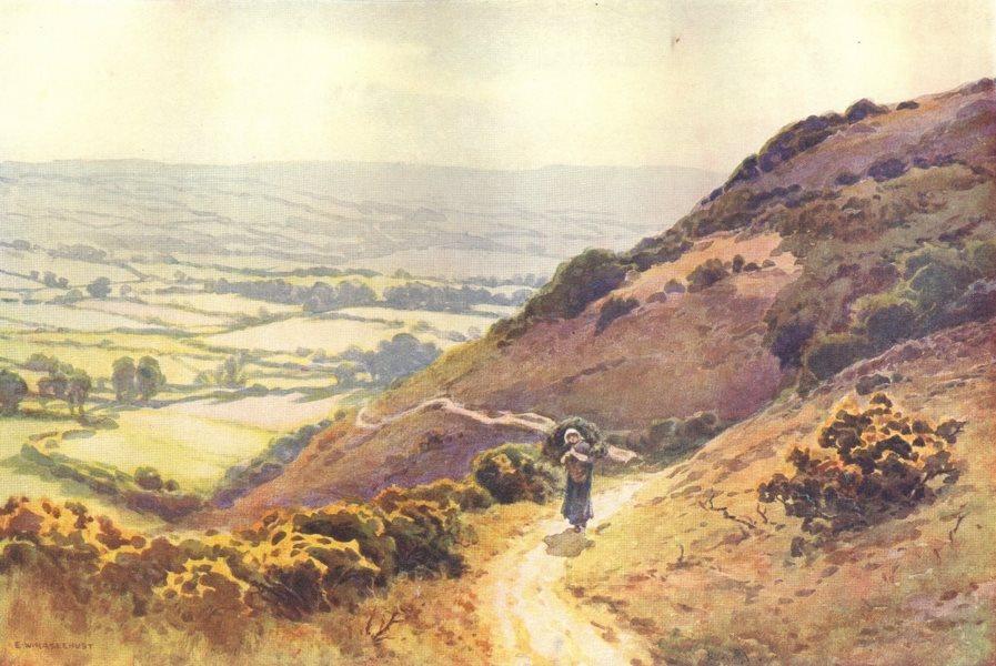 Associate Product Ballard Down, Swanage. Dorset. By Ernest Haslehust 1920 old vintage print