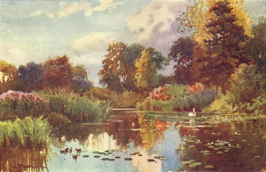 Associate Product CAMBRIDGE. Lake in Botanic Gdns 1907 old antique vintage print picture