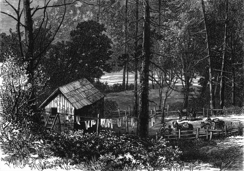 Associate Product CALIFORNIA. Miner's Cabin, American river c1880 old antique print picture