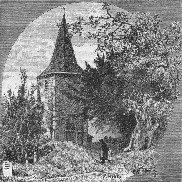 Associate Product FOREST. Brockenhurst Church, famous Yew Oak 1898 old antique print picture