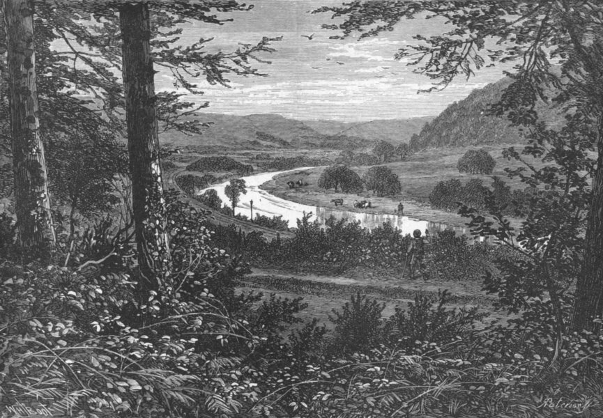Associate Product IRELAND. Wicklow. Vale of Avoca 1898 old antique vintage print picture