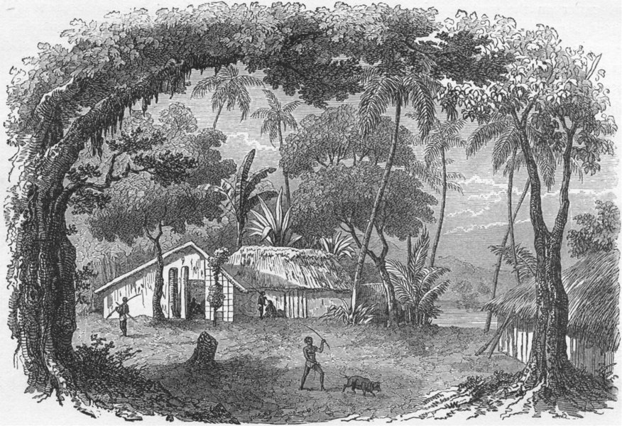 Associate Product RAROTONGA. Ascent of Mist Peak, Native Houses 1880 old antique print picture