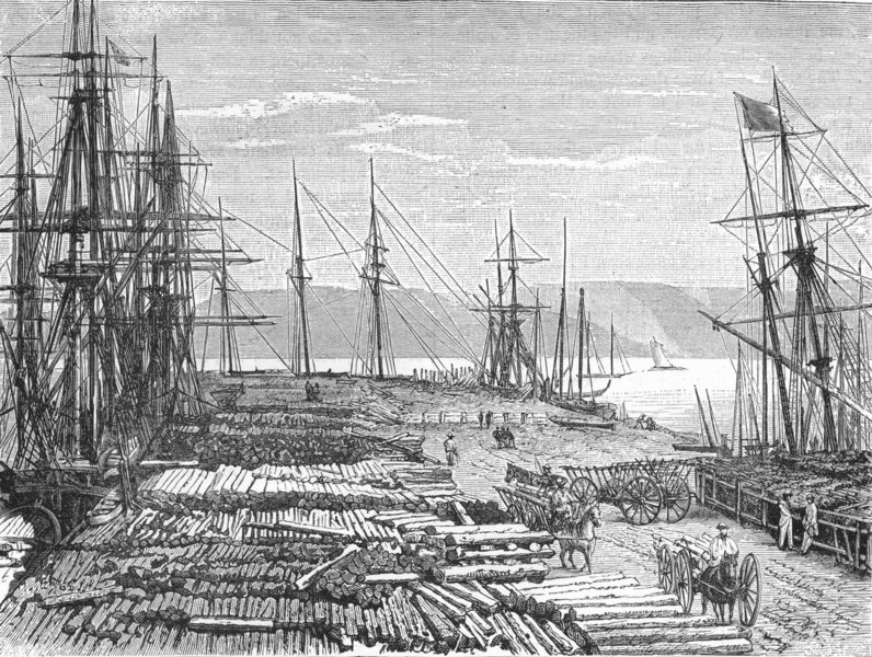 Associate Product PACIFIC ISLANDS. Lumber-Trade 1880 old antique vintage print picture