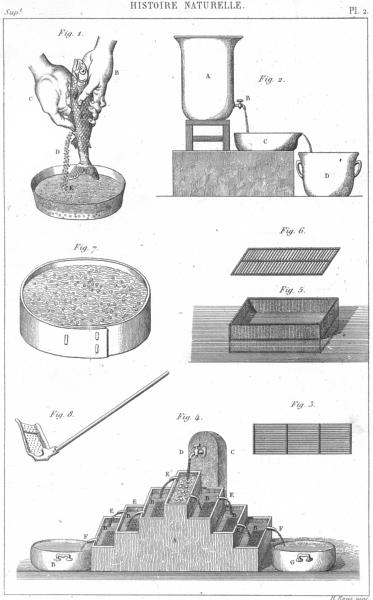 Associate Product SCIENCE. Histoire Naturelle. Repeuplement eaux(Pisciculture) 1879 old print