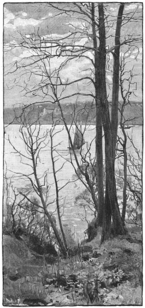 Associate Product NEW YORK. View across the Hudson at Riverside Park 1891 old antique print