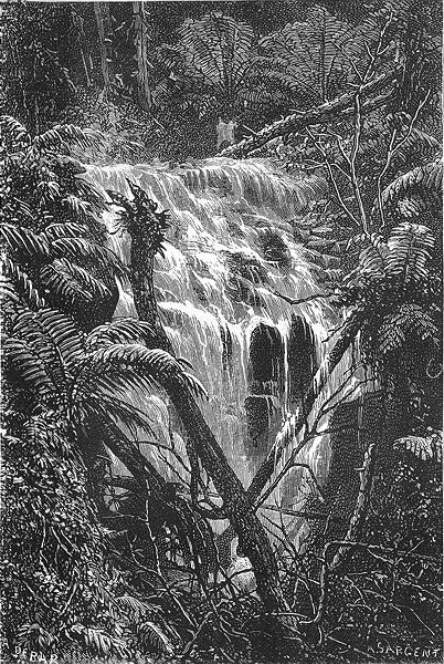 Associate Product AUSTRALIA. Waterfall in the Black Spur 1886 old antique vintage print picture