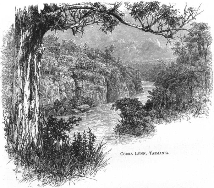 Associate Product TASMANIA. Tasmania. Corra Kings Lynn, Tasmania 1886 old antique print picture