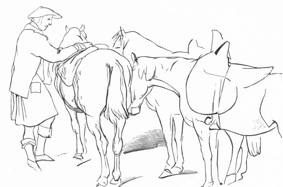 Associate Product HORSES. Highlander & Ponies-Landseer c1880 old antique vintage print picture