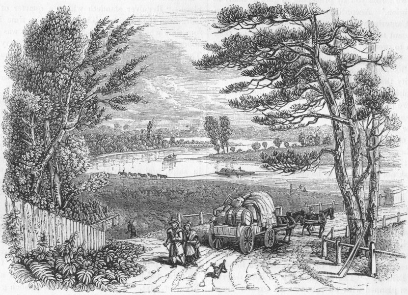 Associate Product RIVERS. The Thames at Coway Stakes 1845 old antique vintage print picture