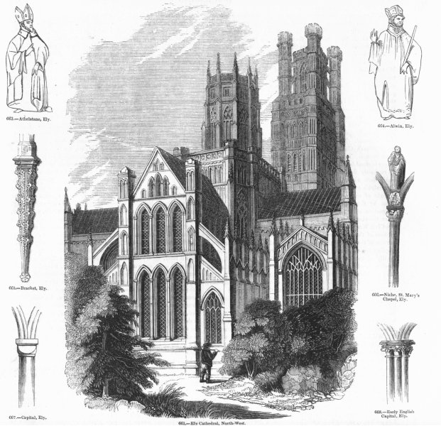 Associate Product CAMBS. Ely Cathedral; Athelstane, Alwin, Capital 1845 old antique print