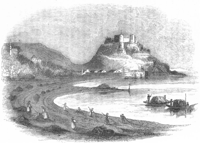 Associate Product MOUNT ORGUEIL CASTLE. Women gathering sea-weed 1845 old antique print picture